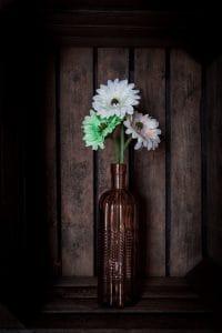 Gerberas in a vase dark version - Björn Beheydt