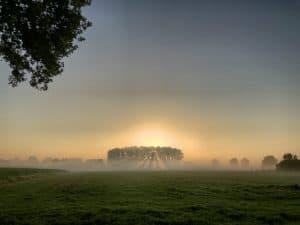 Filtered sunrise wide